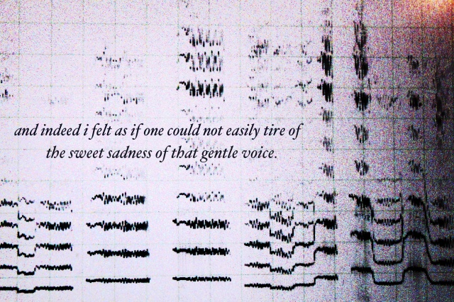 SentEx-sweet sadness of gentle voice