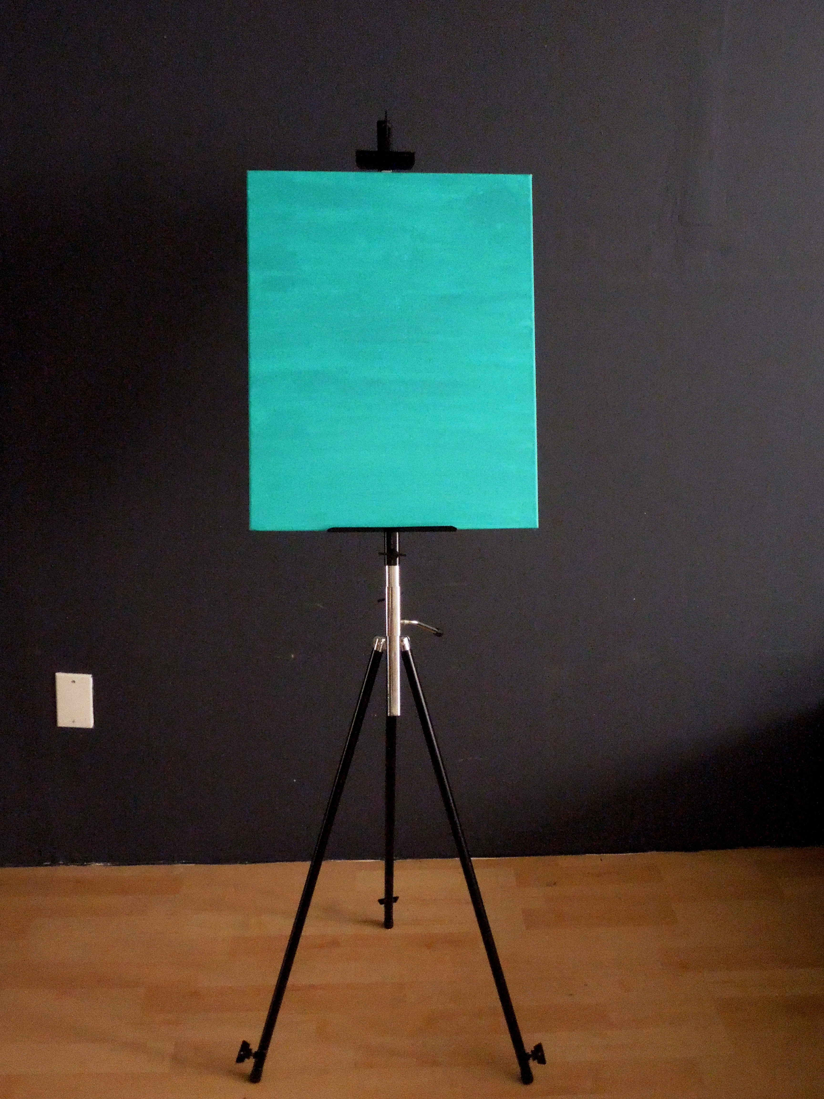 Painting Canvas Blank Canvas Painting Adventureclubinteractive