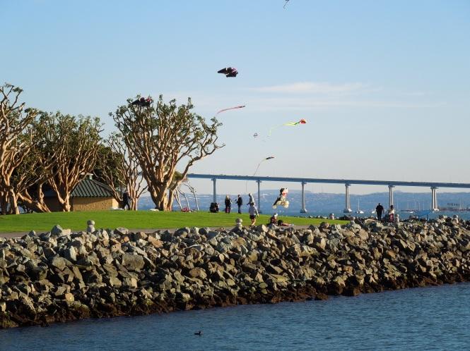 tele-photo tag beach kites