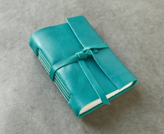 mint journal