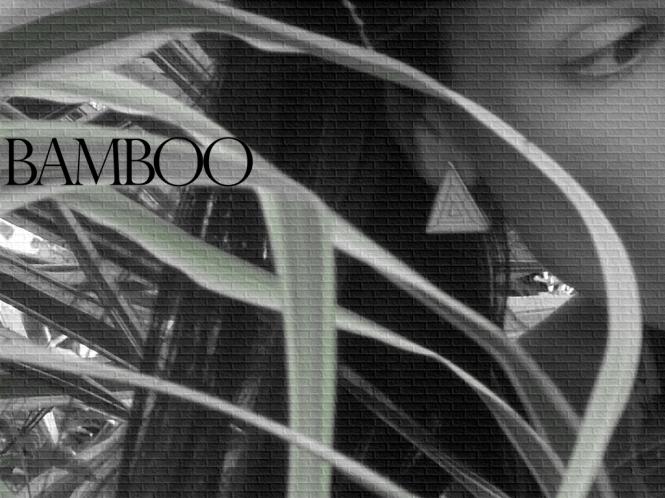 bamboo-2 scavenger