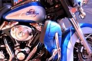 blue harley