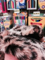 leopard in the art section